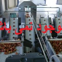 دستگاه پوست کن انار صنعتی